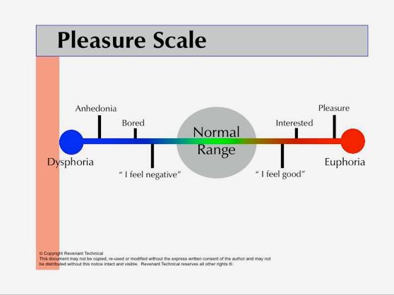 pleasureScale